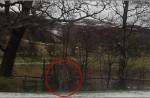 la-photo-sur-laquelle-a-ete-trouve-le-fantome_8091_w560.jpg