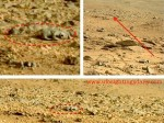 230425-mars-rat-ufo.jpg